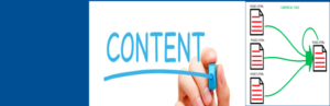 Canonical Content Content Syndication WordPress Plugin