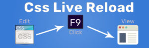 Css Live Reload